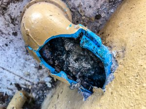 How to Spot a Damaged Sewer Line