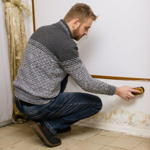 leak detection services in Port Richey, FL